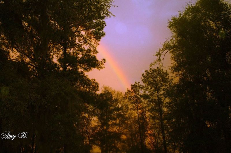 Rainbows Rainbow Sky Sky Rainbowsunset EyeEm Nature Lover Naturelovers Nature_collection