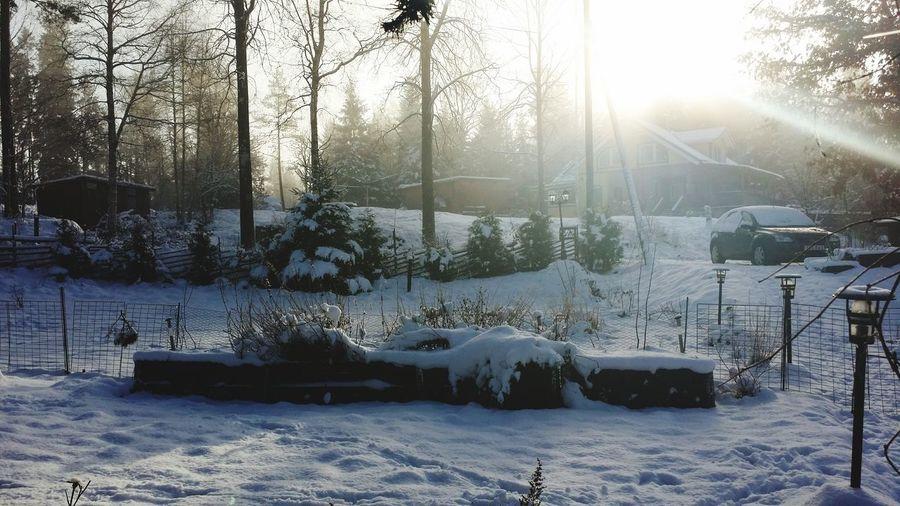 Some Snow ❄ Taking Photos