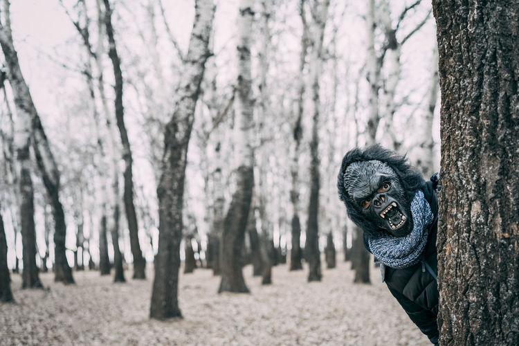 Hello 🙋♀️ Mask Mask - Disguise Gorilla White Forest Tree Trunk Tree Forest One Man Only Outdoors Portrait Only Men Adult Adults Only People Nature EyeEm Ready   Fashion Stories Shades Of Winter