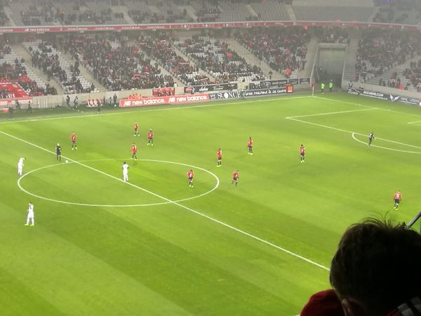 Soccer Sport Stadium LOSC Lille Football Grass Sports Team Green Color International Team Soccer Outdoors Crowd Match - Sport Playing Audience Athlete People Day