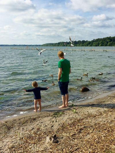 My son relating the seagulls take off to his dad Father & Son Moment Enjoying The View Birds Seagull SEAGULL IN FLIGHT Bythelake Lakeshore Lake Enjoying Life Hidden Gems  Bagsværd Spontaneous Moments Uniqueness Breathing Space