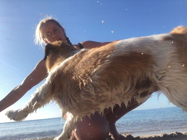 Take a leap of faith and just see what happens Dog Love Beachphotography Dogslife Dogs Of EyeEm Water Sea Sky Leisure Activity Nature Lifestyles One Person Sunlight Beach Motion Sunny Real People Day Outdoors