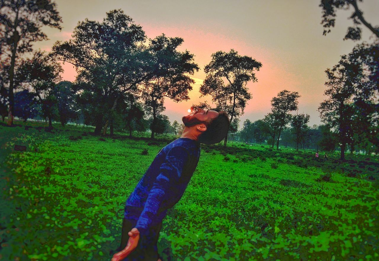 plant, tree, one person, sky, land, field, green color, grass, growth, nature, real people, sunset, casual clothing, young adult, leisure activity, lifestyles, landscape, standing, outdoors