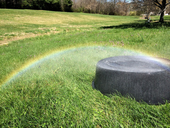 a rainbow arcs colorfully over a grassy yard. springtime fun. Arc Boy Bucket Cool Field Fun Garden Hose Grass Grassy Green Color Growth Hose Hosepipe Rainbow Nature Nature Photography In Motion Rainbow Shadow Spectrum Sun Sunlight Sunny Tree Water