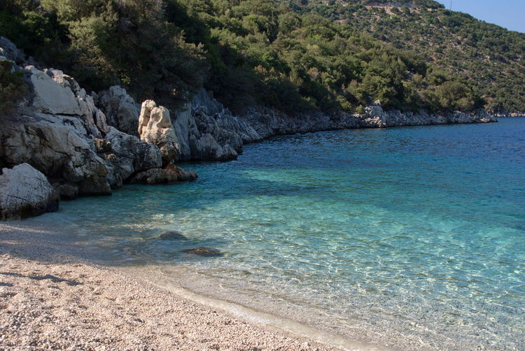 Spiaggia di Antisamos Water Sea Land Beauty In Nature Scenics - Nature Tranquil Scene Tranquility Day Rock Nature Rock - Object Solid Beach Tree No People Plant Outdoors Mountain Idyllic Cefalonia Cefalonia Island Island Greek Islands Greek Summer Greek Landscape Antisamosbeach Antisamos Beach Life