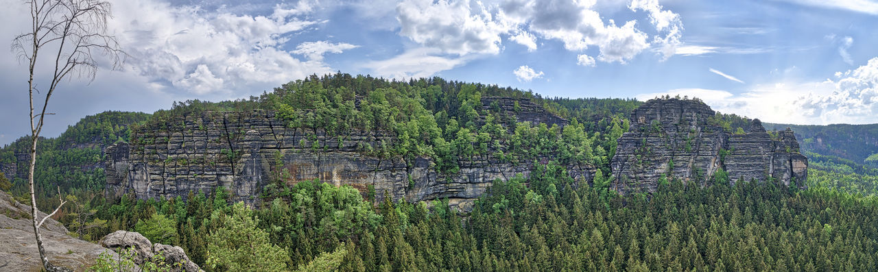 Saxony Saxon Switzerland Saxon Switzerland National Park National Park Nature Landscape Panorama Spring Springtime Season  Plant Scenics - Nature No People Beauty In Nature Outdoors Mountain Mountain Range HDR Non-urban Scene Sky Tranquil Scene Cloud - Sky