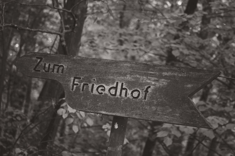 Friedhof Grunewald-Forst Berlin Blackandwhite Canonphotography Close-up Eye4black&white  Eye4photography  Focus On Foreground Friedhof Der Namenlosen Friedhof Grunewald-Forst Germany Grunewald Information Sign No People Outdoors Sepia Sign Text Western Script
