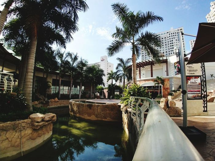 🎨 Shopping Mall Water Swimming Pool Tree Sky Building Exterior Architecture