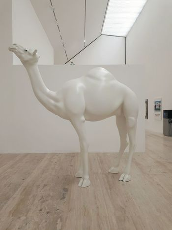 Camello Camellon Museo Jumex Museum Museo Jumex Arte Contemporanea Arts Culture And Entertainment How To Learn To Read Animal Representation One Animal Animal Themes Adults Only Day Only Women One Woman Only
