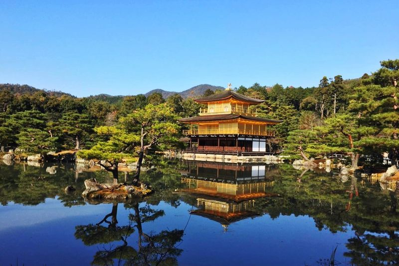 Travel Travelling World Kyoto Japan Golden Golden Temple Temple Shrine Kinkakuji Kinkakuji Temple Bling Beautiful Beautiful Nature Must Must See Architecture 金閣寺 Landscapes With WhiteWall Ultimate Japan