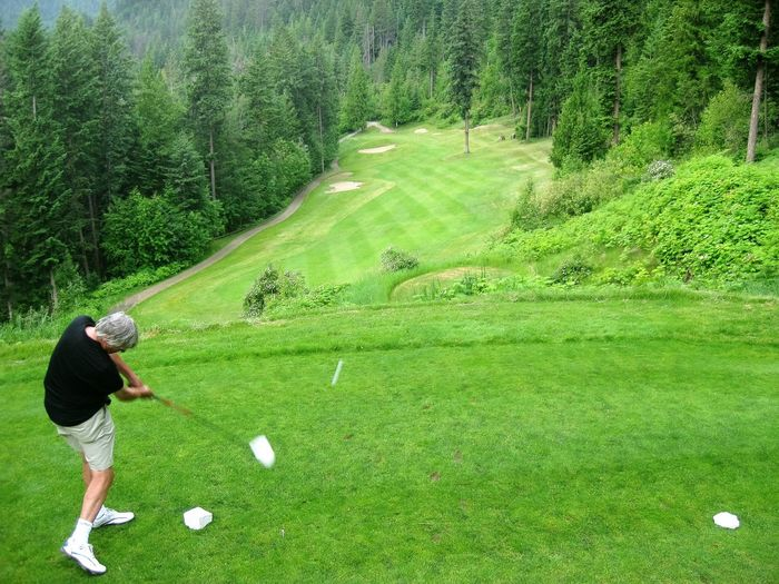 Elevated Tee Golf Course Golf Swing Hyde Mountain Mara Lake Pine Scenics Spectacular Tree