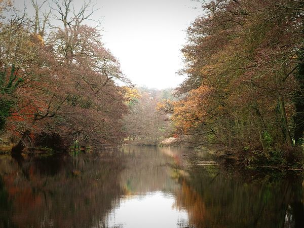 Photography Water Lake Trees Reflection Autumn Autumn Colours Landscape Scenics Tranquil Scene Nature Beauty In Nature No People Freshness