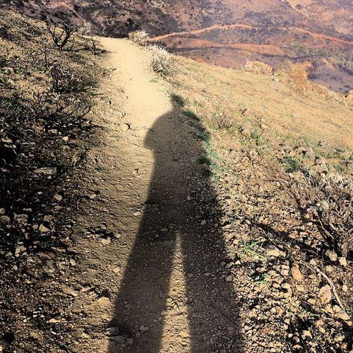 Did I say before that I LOVE winter shadows? So much fun! MtDiablo Summit Hiking
