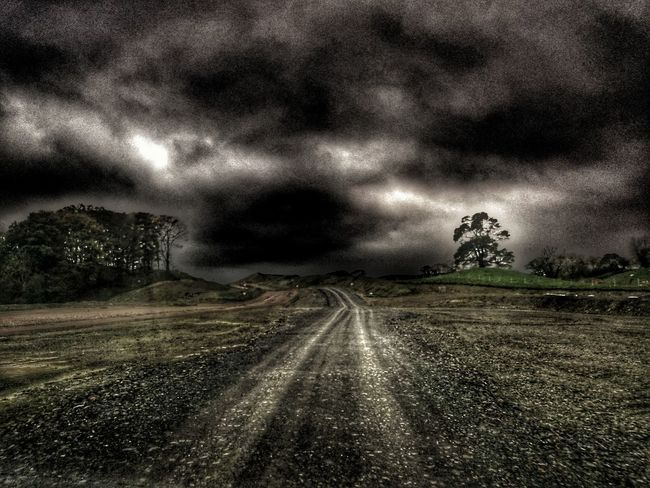 The Way Forward Landscape Road Tree No People Highway Construction Site This Way Or The Highway New Beginings New Road  Nature Field Storm Approaching Hello Darkness My Old Friend Highway To Hell New Roads New Direction