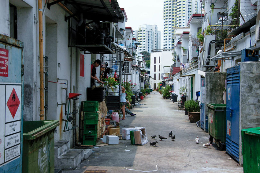 Alley Back Alley Building Exterior Built Structure City Day Outdoors Residential Building Shophouse Singapore EyeEmNewHere