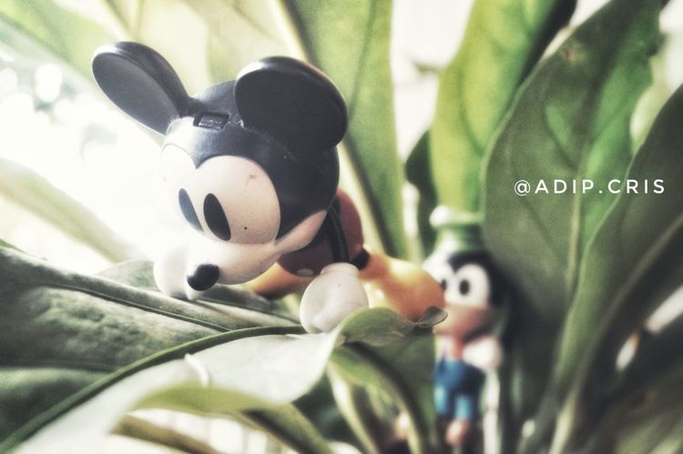Close-up Photograph Toysphotography Toysphotogram Toys4life Toysoutdoors Effect FX Gfx Filter Photo Photos Photography Photographer Sonya58 Memory Toystory Monsterinc Mickeymouse Figurine  Photooftheday Animal Themes No People Outdoors Day