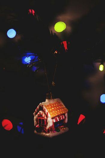 Showcase: December Christmas Tree Christmas Christmastime December
