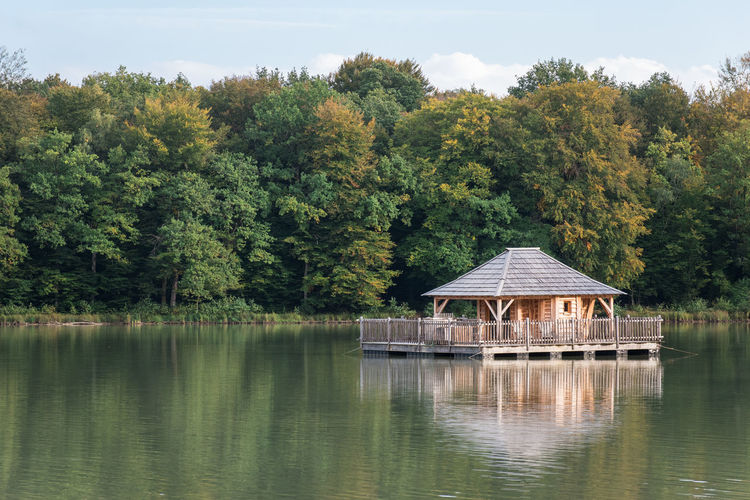 Gazebo by lake against trees in forest