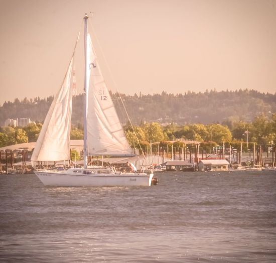 Marine Park WaterFront Columbia River Gorge WA State Columbia River Gorge Memories Sailboat PNW Photography Nautical Vessel Vintage Photography Showcase 2017 Mt Hood Oregon PNWonderland Pnwcollective Pnwisbest Riverdays SummerDays On The River Summer 2017 EyeEm Selects WA State Summer 2017 WA State LOVE