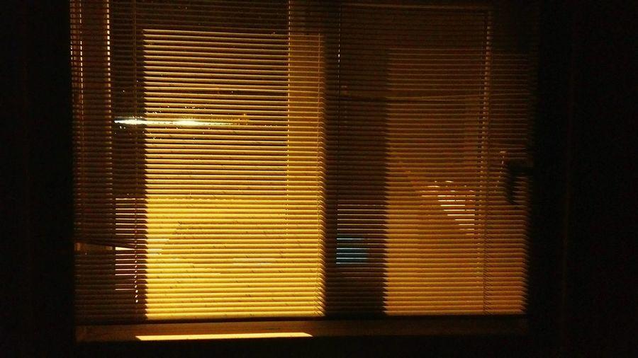 Window Rain Jalousie