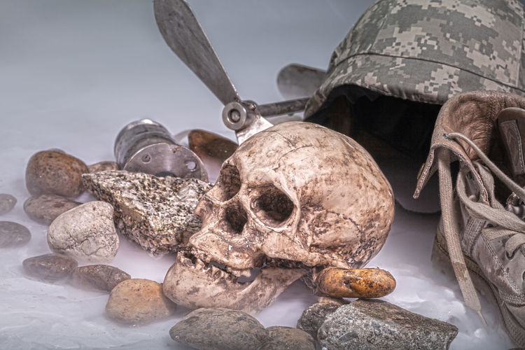 Close-up of human skull on rock