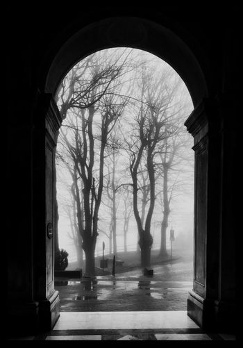 Arch Architecture Tree No People History Black And White Photography Day Landscape Foggy Sanctuary  Countryside Rainy Days After The Rain Sad Loneliness EyeEmNewHere Black And White Friday