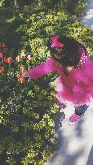Baby Niece Flowers