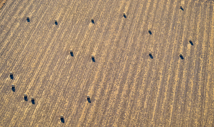 High Angle View Aerial View Aerial Aerial Photography Aerial Shot Farm Farming Field Agriculture Corn Cornfield Baleage Silage Bales Livestock Pattern Landscape Textured  Land Rows Random Feeding Animals Backgrounds Stripes