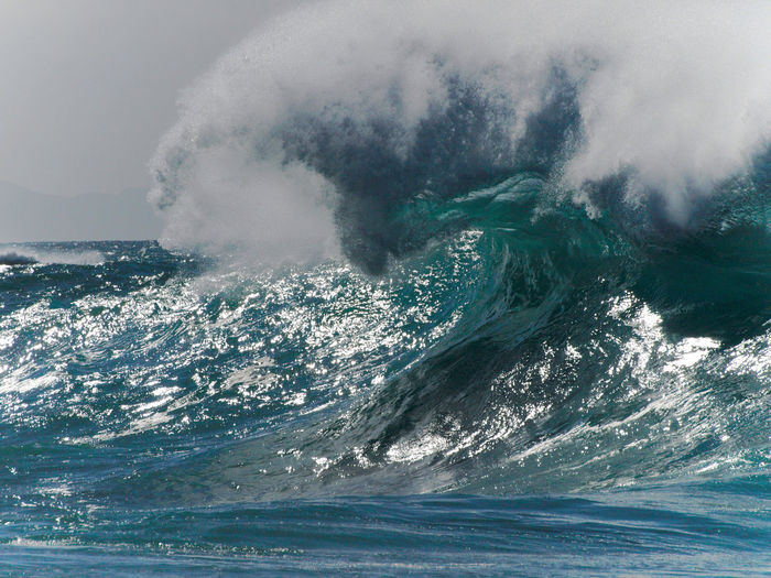 The big waves of Fuerteventura Water Sea Power In Nature Power Motion Beauty In Nature Nature Wave No People Day Waterfront Outdoors Sky Splashing Crash Environment Scenics - Nature Force Land Hitting Breaking