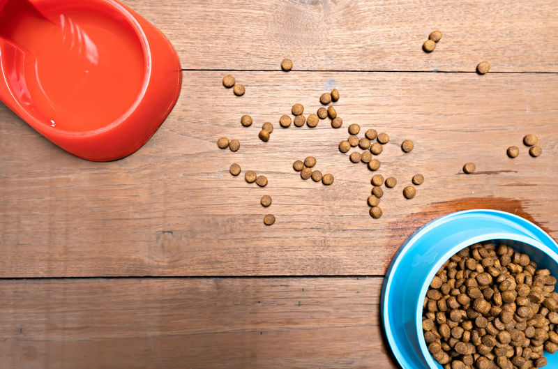 Pet supplies concept. Dry food and accessories on wooden background Accessories Animal Background Blue Brown Canine Care Cat Closeup Color Colorful Concept Copy Cute Delicious Design Diet Dog Domestic Dry Eat Equipment Feed  Food Funny Group Health Healthy Life Meal Nobody Nutrition Object Pet Puppy Shape Small Snack Space Supplies Table Text Texture Top Toys View Vintage Water Wooden