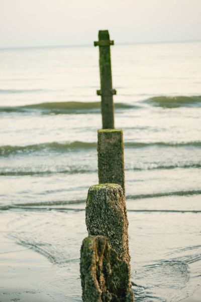 A broken breakwater. Breakwater Green Color Tide Plant Nature_collection EyeEm Best Shots Selective Focus Close-up Rippled Waves Sand Copy Space Clear Sky EyeEm Selects Sea Water Nature Sky Horizon Over Water Beauty In Nature Scenics - Nature Day No People Outdoors Land Beach Wooden Post Post Tranquility Tranquil Scene