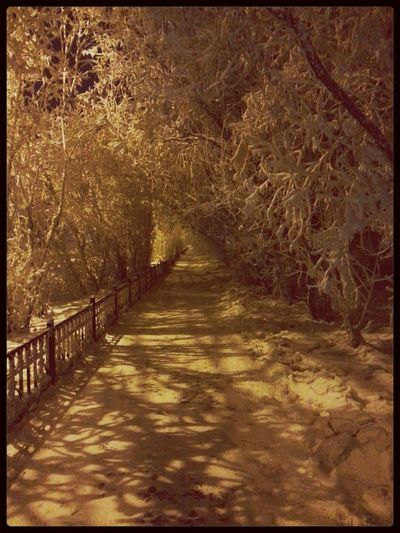 Streetphotography Winter Nightphotography Yakytsk