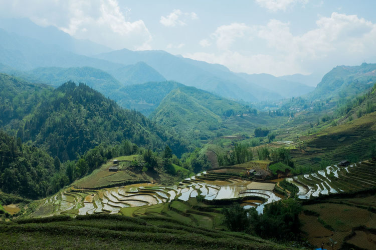 Green Mountain View Nature Rice Paddy Sapa Sapa, Vietnam Sky And Clouds Viet Nam Vietnam Vietnamese Countryside Landscape Lào Cai Mountain Mountains Rice Field Sa Pa Vietnam Trip