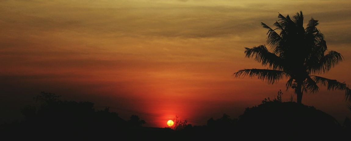 Diskusi Senja Sunset Thebestsunsets Sunset Silhouettes Sunset Lovers Sunsetphotography Eyembestshots First Eyeem Photo 1000likes Sunsetphotos Sunriselookslikesunset Likeforlike Latepost Eyesunset