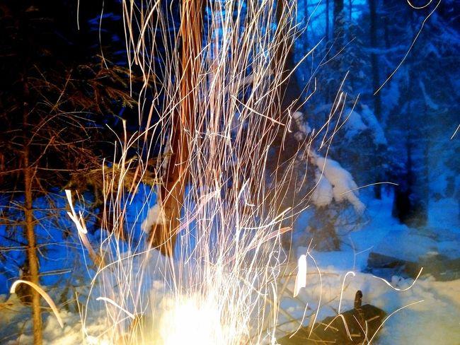 Bonfire Forest Winter Blackberrypassport Blackberryphoto Treveling