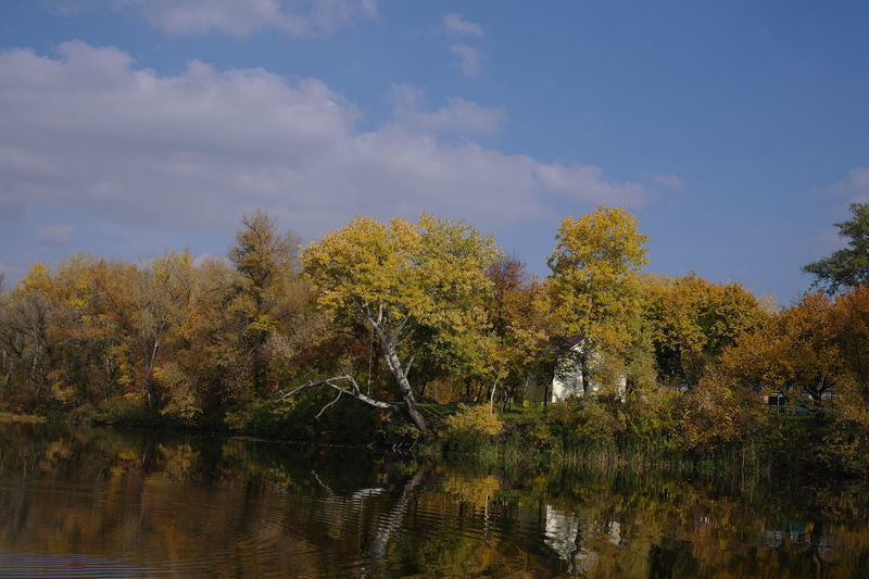 River in Autumn Tree Water Sky Beauty In Nature Tranquility Scenics - Nature Lake Autumn Nature Cloud - Sky Waterfront
