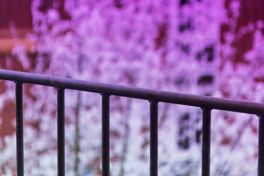 Ich probiere gerade Verlauffilter .... red filter ... Focus On Foreground Metal No People Outdoors Prison Day Close-up Nature Sky Jacqueline Schreiber Canon EOS 600D DSLR Sigma 18-125mm Closeup Photography Winter Snow Cold Temperature Winter Red Filter Canon600D