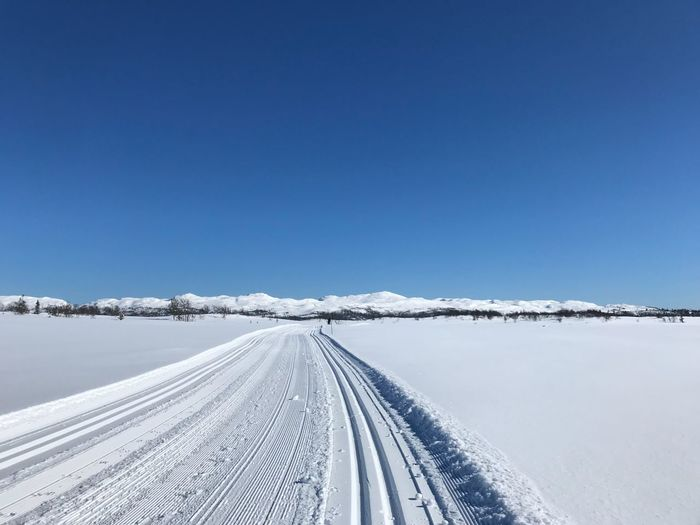 Peace Peace Cross Country Skiing Skiiing Tracks Snow Winter Cold Temperature Nature Blue White Color Transportation Weather Clear Sky Day No People Road Tire Track The Way Forward Beauty In Nature