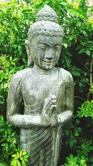 Statue Religion Sculpture Plant Outdoors Day Nature No People Buddha Buddhism Buddha Statue Cultures City Love Beauty In Nature Beautiful Goals EyeEm Best Shots EyeEm Nature Lover Nature Photography Natural Grey Color Stone Aum OM