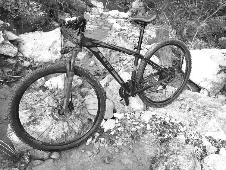 Cube Cubebike Kyrenia Northcyprus Cycling Cyprus Sightseeing Blackandwhite Sports Photography