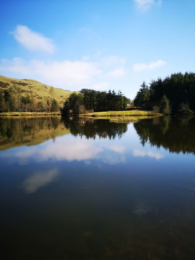 Nant Yr arian Spring Has Arrived Mid Wales In March Wales❤ Tree Water Blue Reflection Lake Sky Cloud - Sky Landscape Lush Foliage Symmetry Reflecting Pool Greenery Fern Woods Reflection Lake
