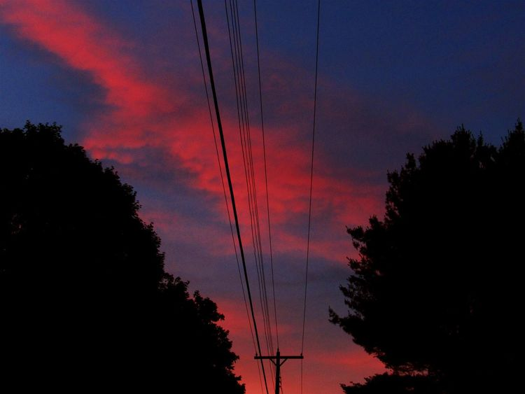 Taking Photos Check This Out Powerlines Vivid Colours  Eyeemsunsets Cloud_collection  EyeEm Best Shots Treesilhouette The Great Outdoors - 2015 EyeEm Awards From My Doorstep