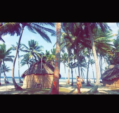 Beach Vacations Travel Destinations Women Sea Palm Tree Live For The Story