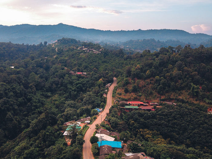 Aerial view of forest against sky