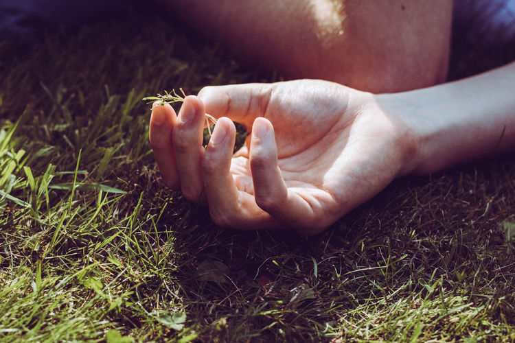 Grass Bonding Close-up Day Dreamy Grass Hand Human Body Part Human Foot Human Leg Low Section Lying Down Men Outdoors People Real People Relaxation Soft Filter Summer Togetherness Two People Women EyeEmNewHere Love Yourself