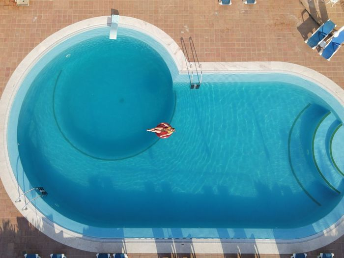 High angle view of fish swimming in pool