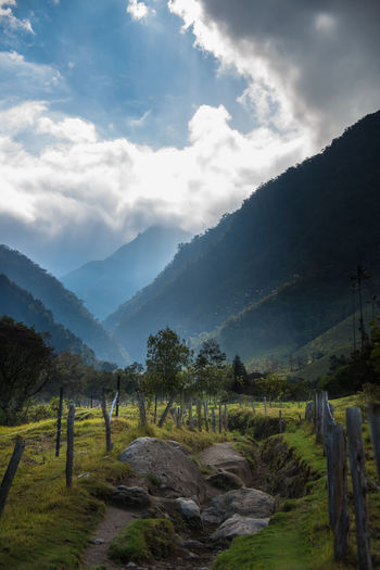 Adventure Beauty In Nature Cloud - Sky Coffee Region Colombia Day Eje Cafetero Hiking Idyllic Landscape Lush - Description Mountain Mountain Range Nature No People Outdoors Path Rural Scene Sky Sunbeam Travel Travel Destinations Tree Trekking Valle De Cocora
