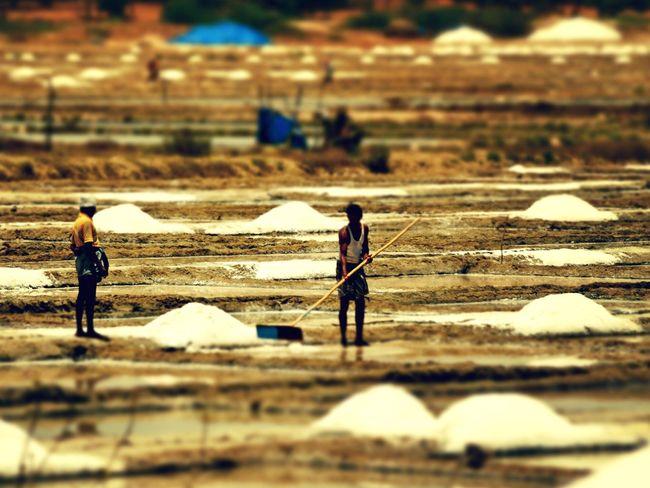 Selective Focus Outdoors Salt Field Salt Pan Workers Hot Summer Hard Labor Difficult Life No Shoes Poor Life