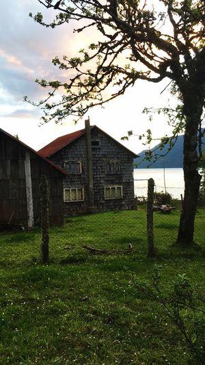 Casa de los abuelos Old House . Architecture . Plant Architecture Sky Building Exterior Grass Built Structure Tree