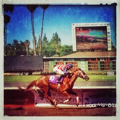 Lovin' the horse races last Sunday - not bad for an iPhone 5 shot (© Sean Arbabi | Arbabi Imagery)